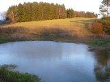 Rybník pod Milinou