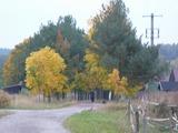 Podzimní Olešná
